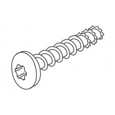 Connect Anchor screw C4